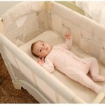 Arm's Reach Mini Co-Sleeper Bassinet